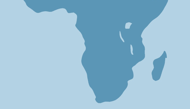 Our focus areas for Africa and South Africa in 2021